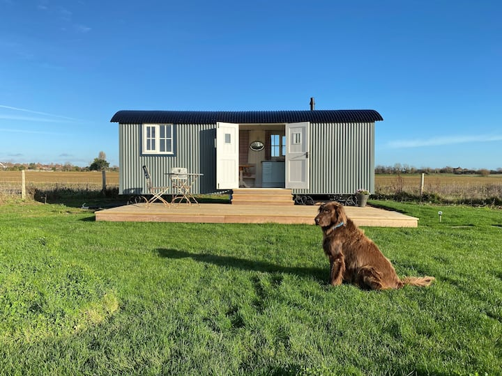 Stone Meadow Shepherd's Hut, Chichester