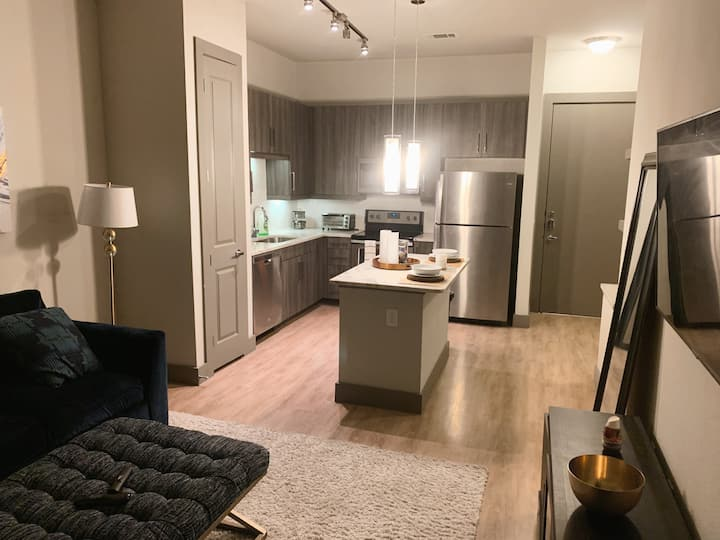 Modern Stay / luxury 1BR/ Spring, tx