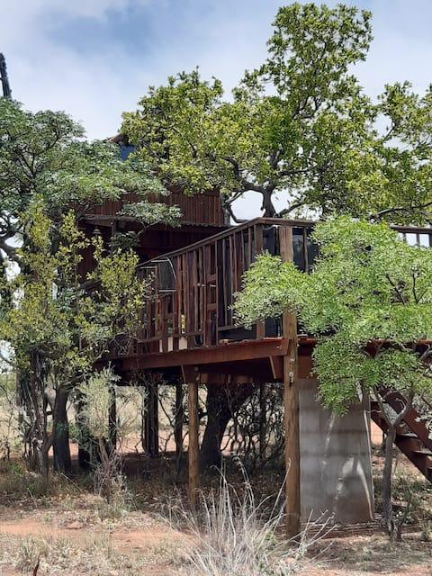 To trær på et stykke Afrika