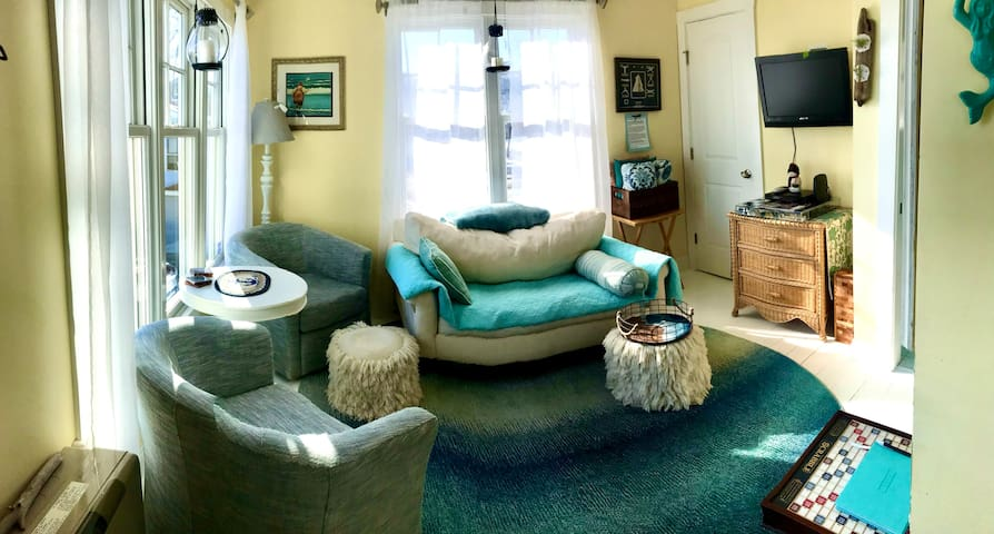 Cozy living room seating for 3-4 with pull out sofa single twin size bed. Extra roll away cot in closet if needed.