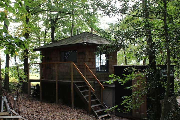 Magical Treehouse/Cabin hidden in Ancient Woodland