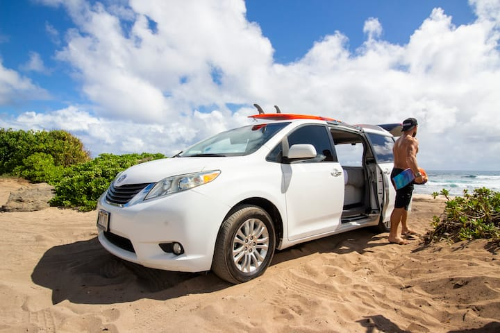 Hawaii Camper Van  2015