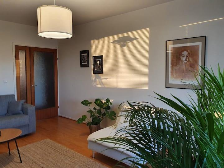 Cozy completely renovated flat in Kajaani center