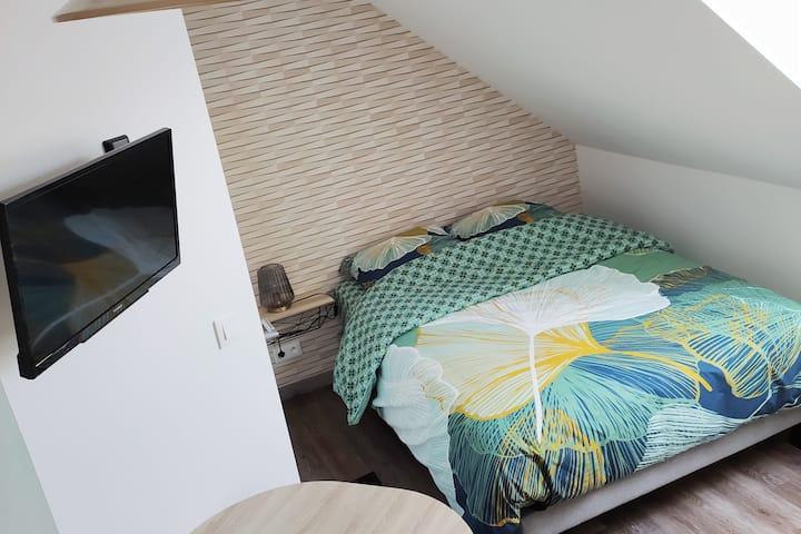chambre avec cuisine et salle de bain privative