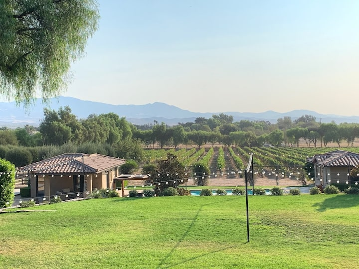 A Boutique Vineyard Experience - The Bocce