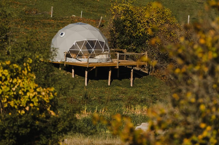 Geo Dome on the Farm!
