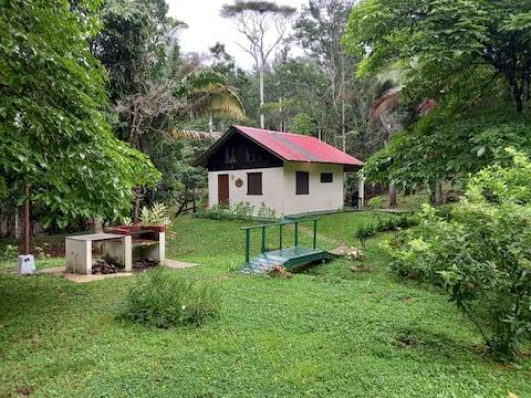 Cabaña Tia Toya - Cerro Azul