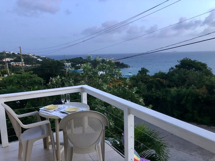Two Ocean View II/Entire Apt/Walk to the Beach