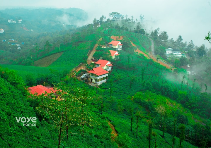 Secluded Tea Estate Cottages W/ onsite trekking