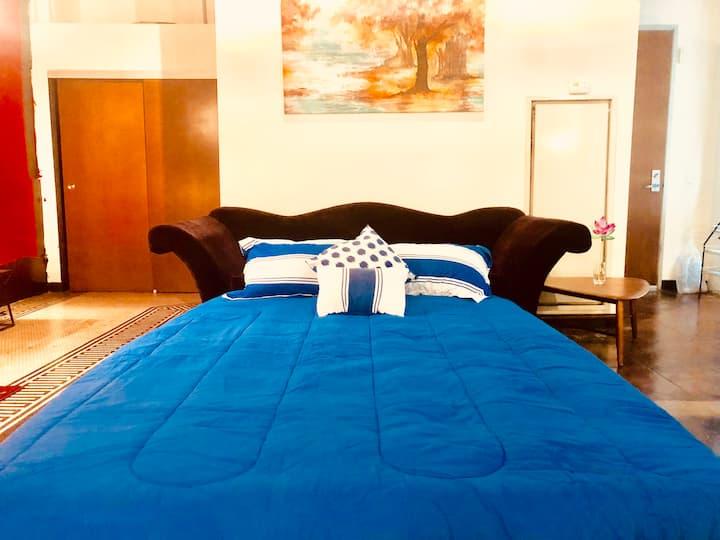 LARGE RED ONE BEDROOM LOFT IN BEST DTLA LOCATION