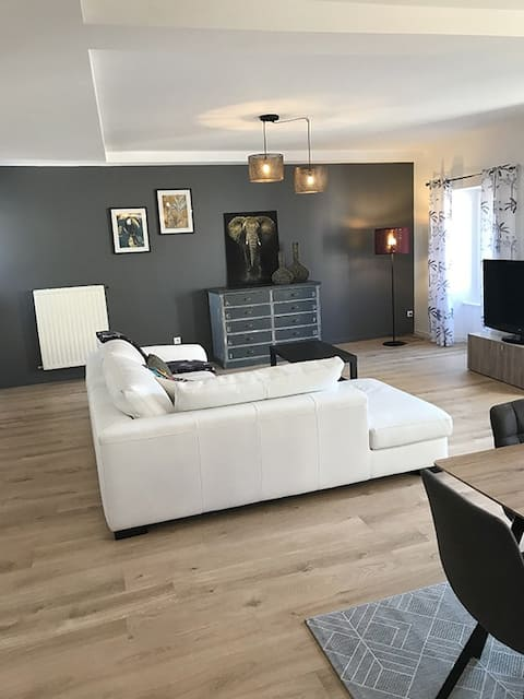 Annonay centre, grand appartement cosy 3 chambres