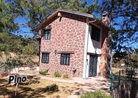 Cabaña Amealco Pino