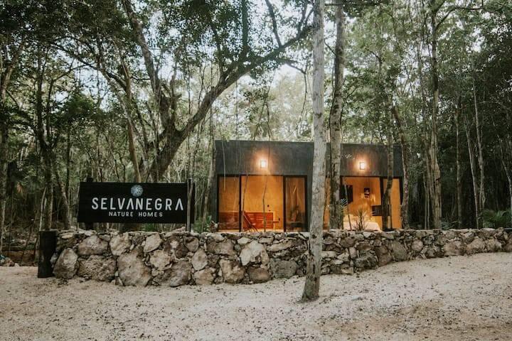 """""""Villa Aire"""" Selva Negra"""