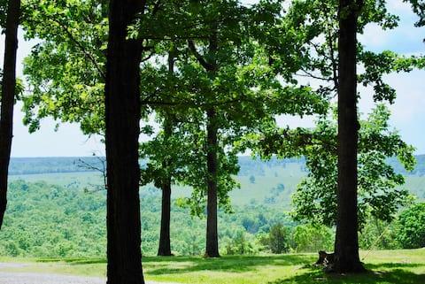 森の中のかわいいオザークマウントキャビン:静かな脱出体験