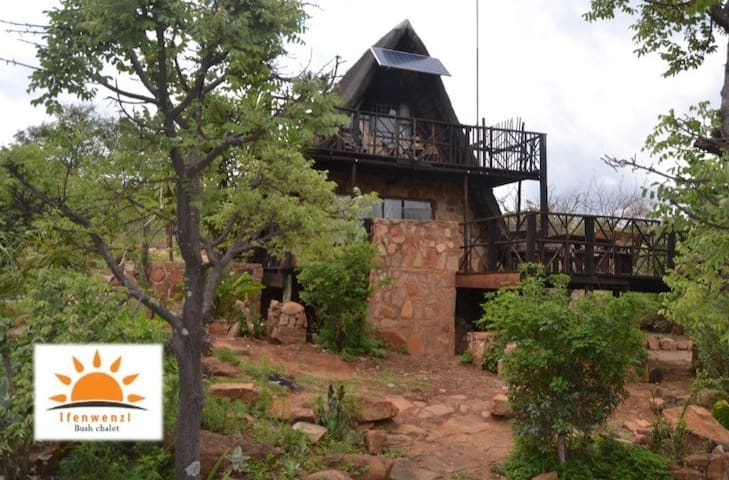 Ifenwenzi Bush Chalet