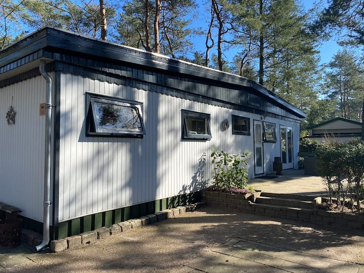 Charming Forest Chalet on the Veluwe