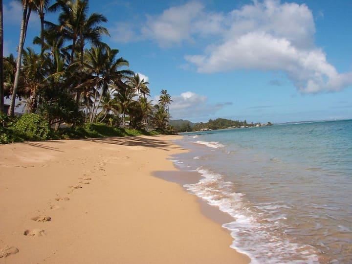 Good Beach Vibes @ Pat's at Punaluu #107!