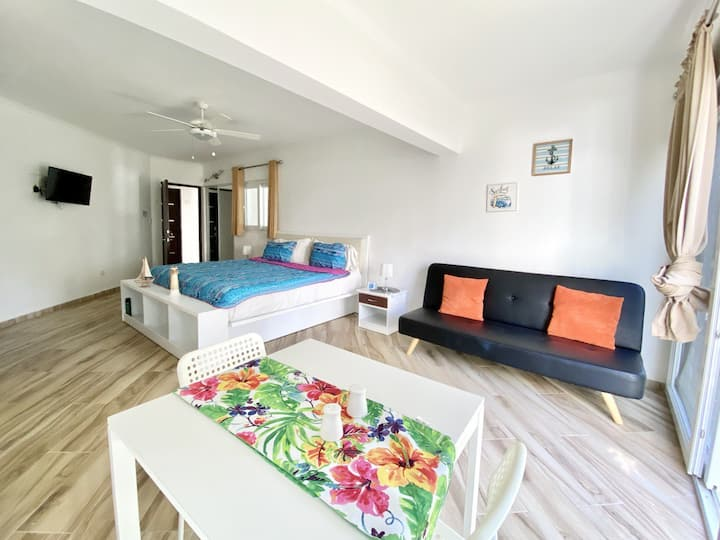 Central Studio in Cabarete's TCL 315