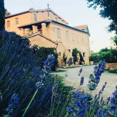 Apartment in Tuscan farm house.