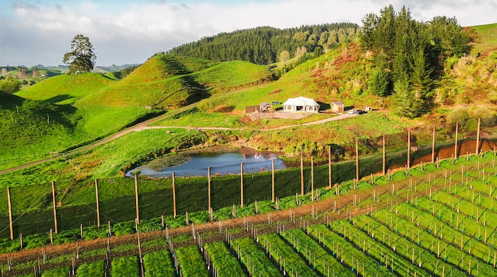 Orchard Valley, Waitomo Boutique Glamping