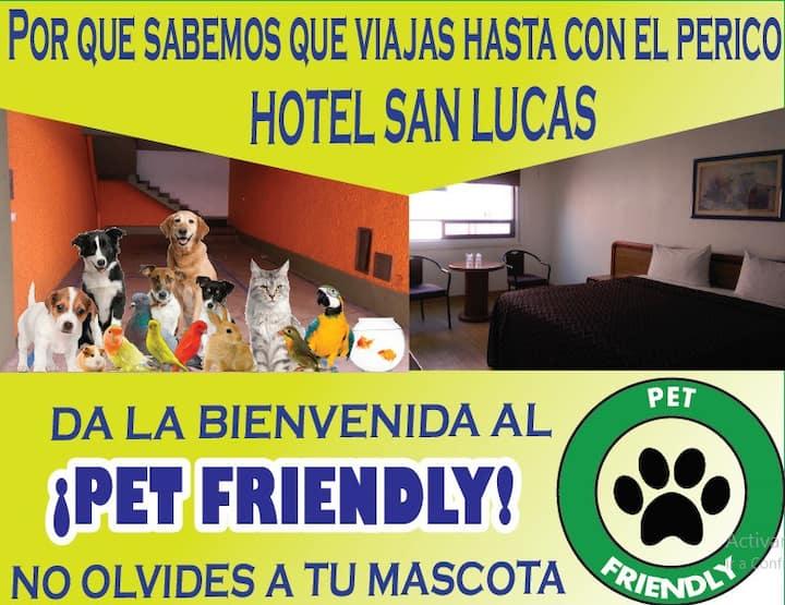 Se aceptan mascotas cerca del metro Pino Suárez