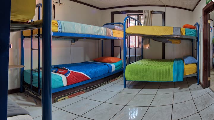Hostel Bed in Female Only Dorm / 1 Cama.