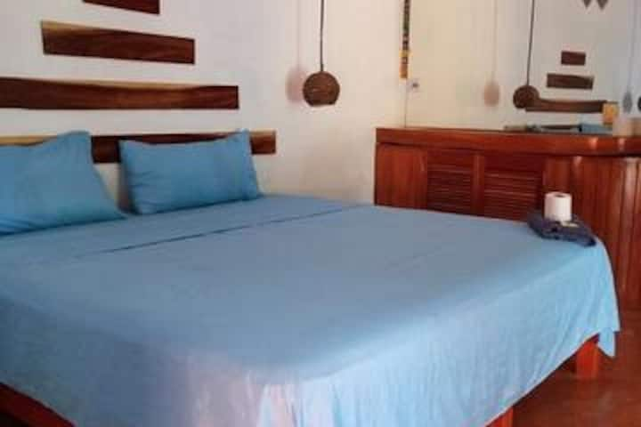 Suite in front of surf spot Pta. Zicatela  w/sea v