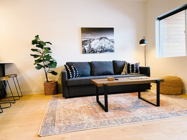 Living area with sofa sleeper for two.