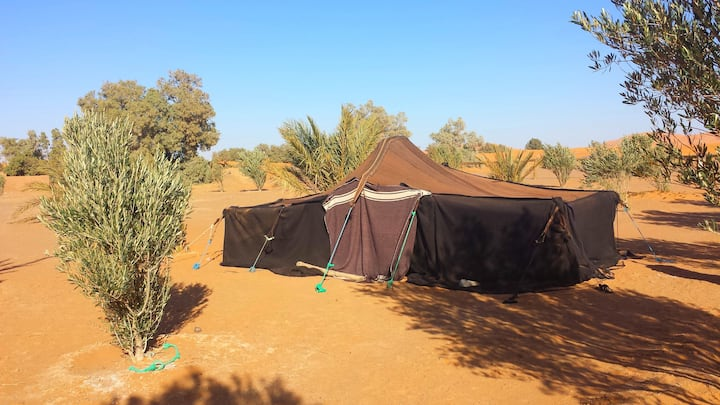 Tente traditionnelle berbère - Auberge Africa