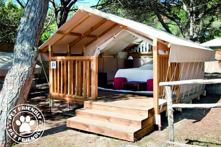 Mini Lodge Tent - Dog Friendly ( 2 Pers.)