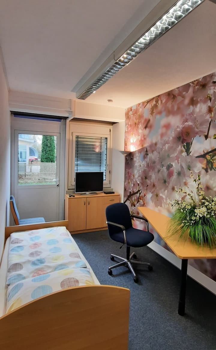 Sakura Zimmer