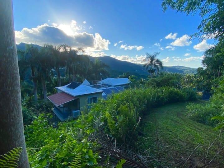 Finca del Mucaro en el Yunque