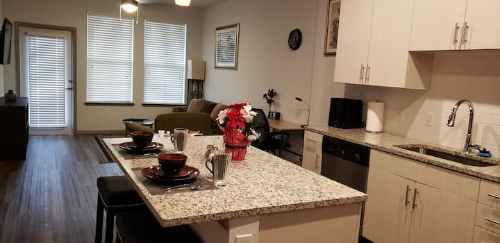 Entire Apartment with Extras for Your Health