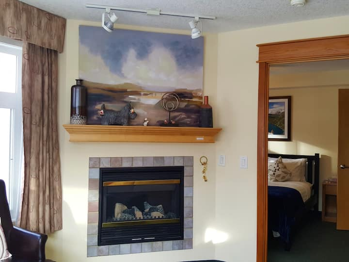 Mountain View Bright 1BR/1BA Suite w/Full Kitchen