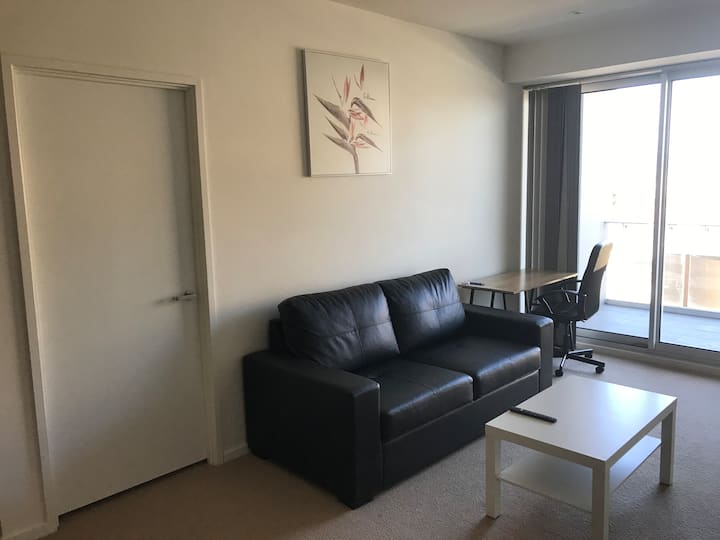 Stunning CBD 1 BR Apartment With a View - V413