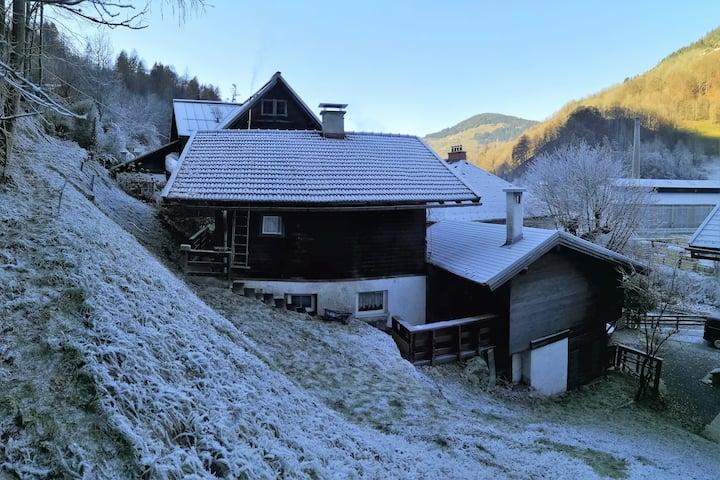 Alpen Hütte nahe Zell am See für bis 8 Personen