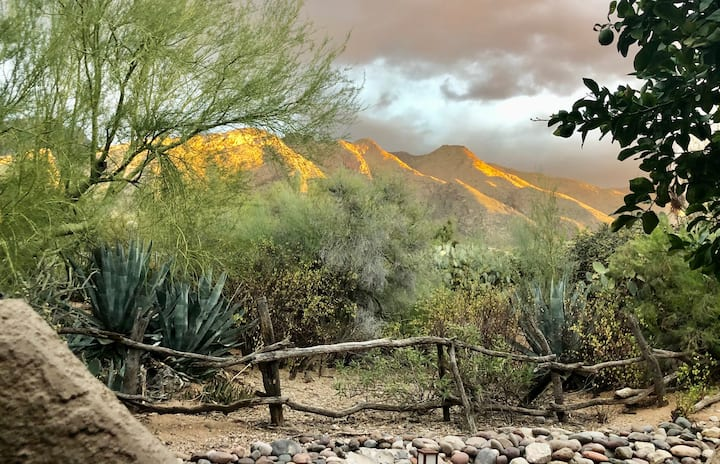 Condo- Coffee With A View In Catalina Foothills