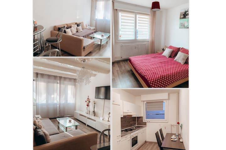 Premium Apartment Basel Airport 50m2