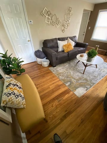 Living Room / Queen Pull Out Sofa