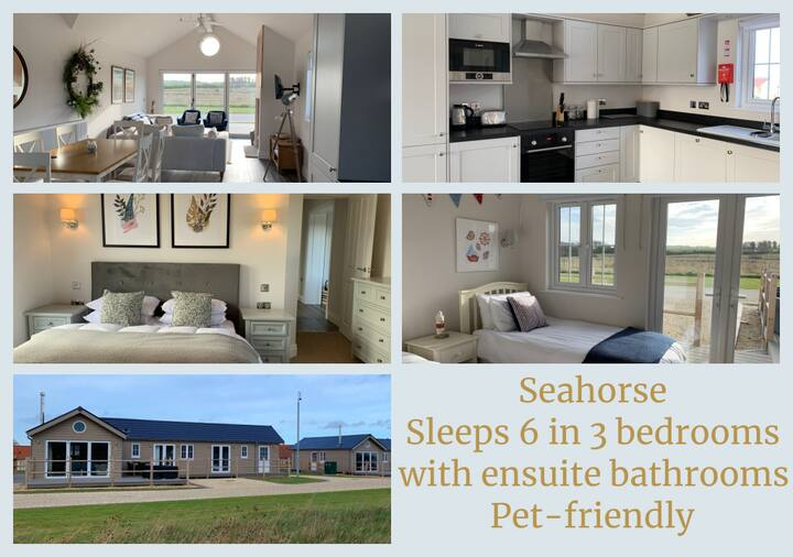 NEW - Seahorse - The Bay Filey - 3 bedrooms for 6