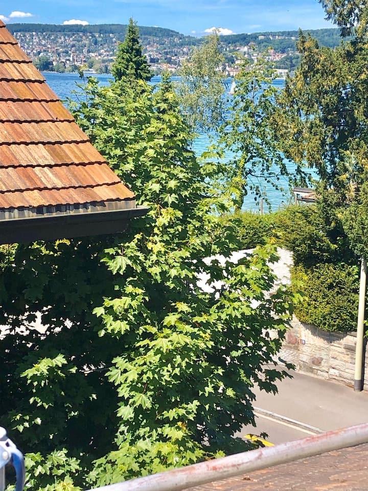 Zürich gemütlich am See, sep Eingang nahe ÖV