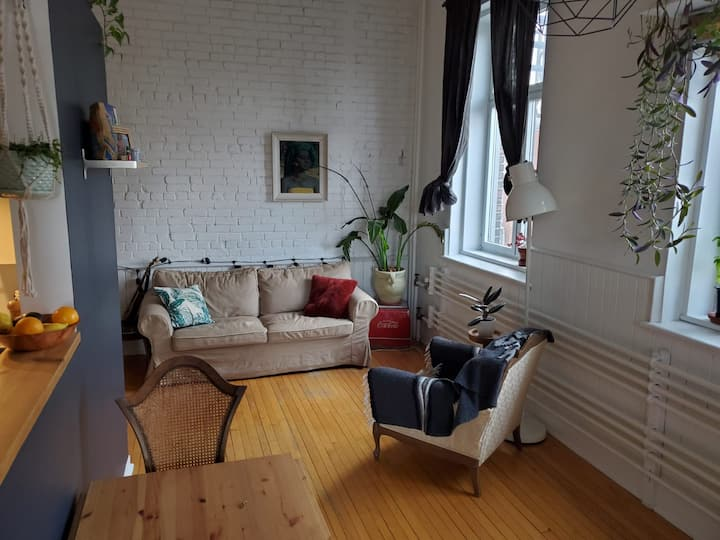 Loft on the Plateau - 1500$ for 3 weeks or 1 month