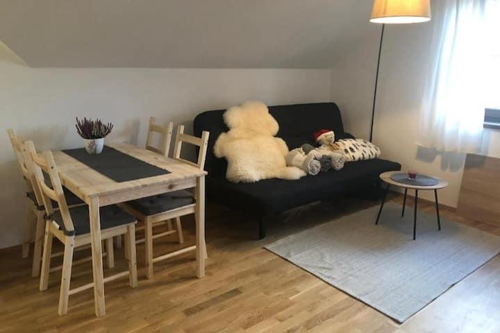 Moji Sousedi II - Apartmán Červená