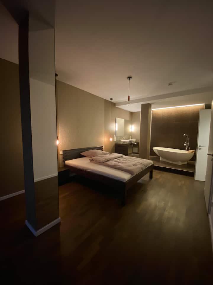 Furnished luxury Apartment