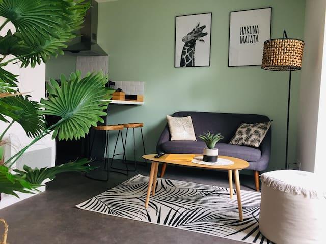Grand studio Centre Lorient avec Jardin & la Fibre