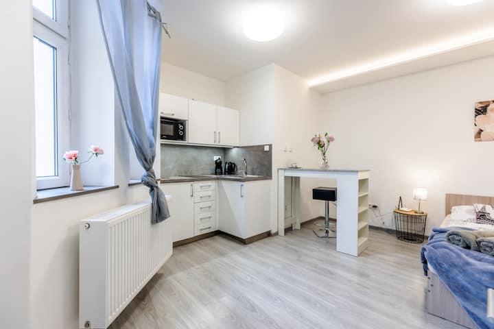Tulip apartment Brno-center
