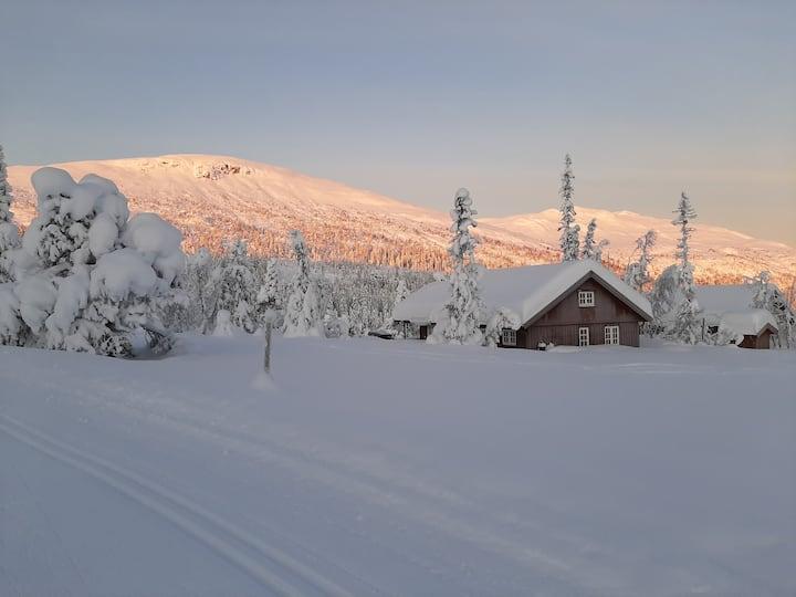 Koseleg hytte i vakker natur