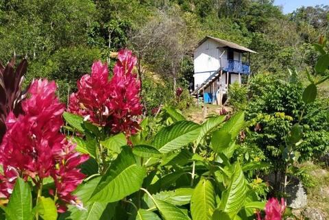 Alojamiento en Cascada de Azufre, Cabaña del amor