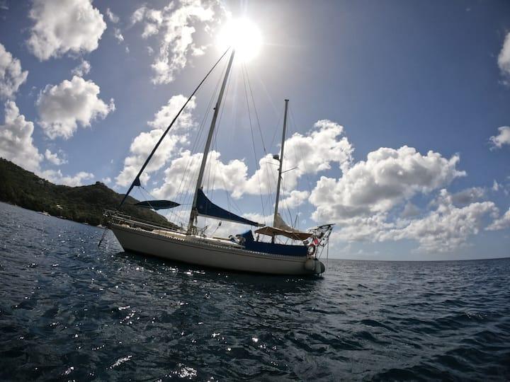 Flotando en el caribe! Duerme a ritmo de las olas.