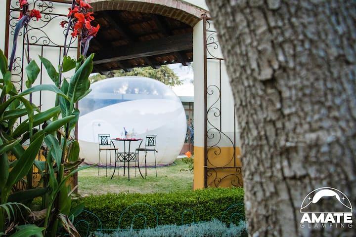 Glamping Amate, hotel burbuja - Jardin Privado